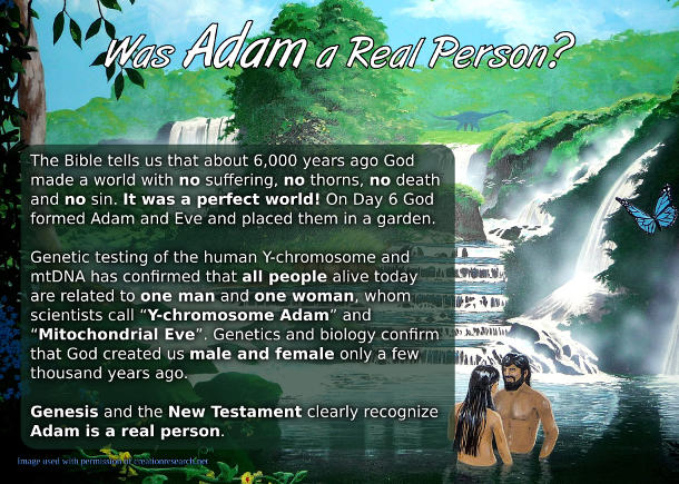 Was Adam a Real Person? Postcard front