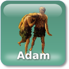 Was Adam a Real Person?