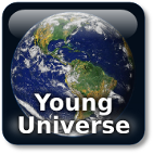 Young Universe